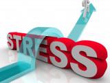 stress2 WEB READY