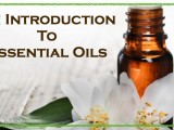 intro to oils